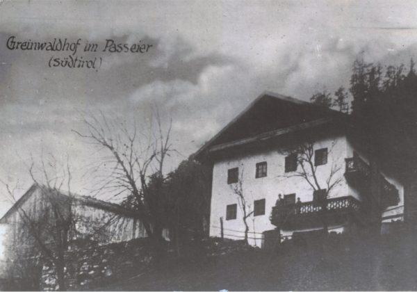 Greinwaldhof-300-skal